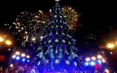 Новогоднее Крио шоу