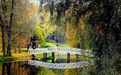 Пушкинские Горы-Псков (2 дня)